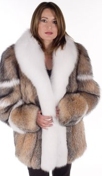 fox jacket-fox fur jacket-white fox fur trim-crystal-womens real fur jacket