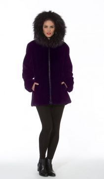 women-purple-sheer-beaver-jacket-1712-289792